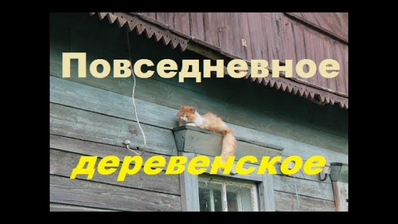 Повседневное деревенское: неизвестная поклонница/дела/Рыжик.