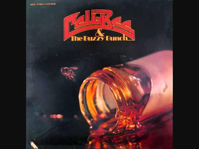Celi Bee The Buzzy Bunch - Superman - 1977