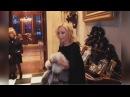 Алла Пугачева Максим Галкин Лиза и Кристина Орбакайте - «Модный Приговор»