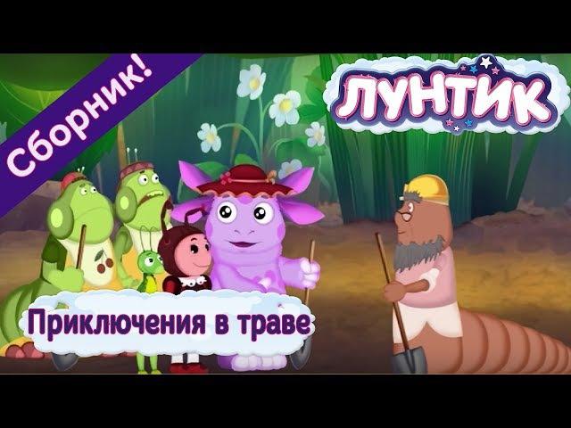Лунтик 🌼 Приключения в траве 🌼 Сборник мультфильмов 2017