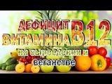 Как восполнить дефицит витамина B12 на сыроедении и веганстве Стоит ли принимать таблетки, инъекции