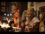 Проповідь Предстоятеля УПЦ в Неділю 27-у після П'ятидесятниці