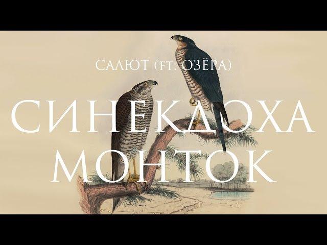 Синекдоха Монток ft. Озёра – Салют   Official Lyric Video