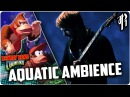 Donkey Kong Country AQUATIC AMBIANCE Metal Cover by RichaadEB