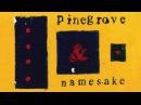 Pinegrove Namesake