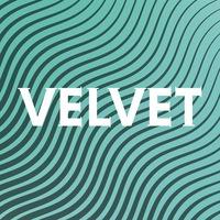 Логотип VELVET