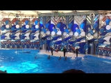 Дельфинарий в Сочинской Ривьере )))