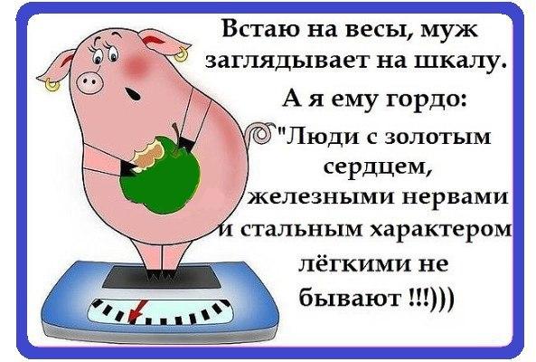 Днем, юмористические картинки с надписями ржачные про вес