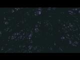 Danko Jones - My Little RnR (Official Music Video)