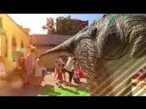 ШОК-ВИДЕО: оттаявший динозавр... ожил!!! Что ждёт нас этой весной?