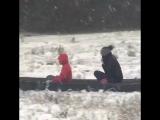 Cajun sleigh ride - 978986