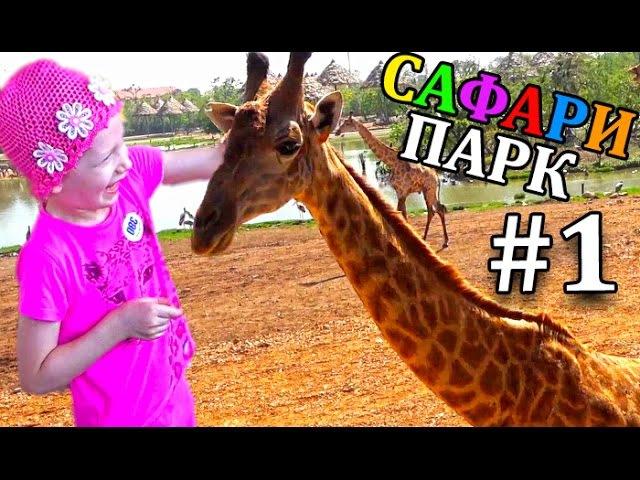 Сафари парк для всей семьи 1 Кормим и гладим Жирафа Шоу Обезьян Зоопарк в Бангкоке
