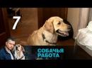 Собачья работа. Серия 7 2012 Криминал, детектив @ Русские сериалы