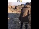 Instagram post by Видео и Вайны • Nov 17, 2017 at 119pm UTC