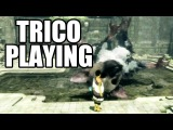 THE LAST GUARDIAN - Trico Playing In Water