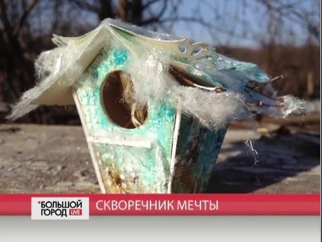 Скворечник мечты. Большой город. live. 20/11/2017. GuberniaTV