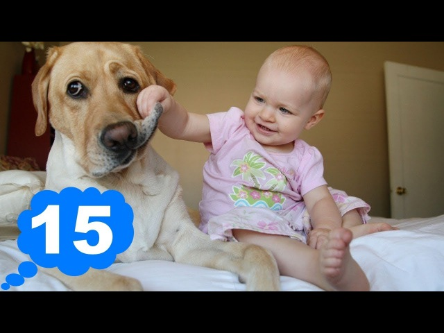 ПРИКОЛЫ С ДЕТЬМИ Смешные дети Видео для детей || Funny kids Funny Kids Videos 15