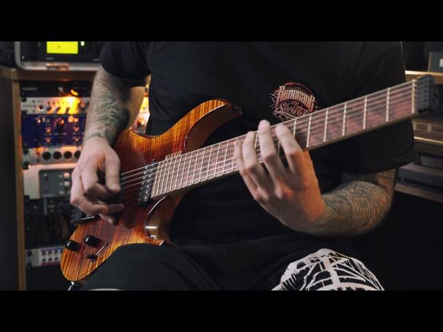 PSYCROPTIC - Carriers of the Plague (Guitar Cover, Kiesel Vader)