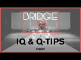 IQ  Q Tips  Bridge Jr's 2017 (Winter)  STEEZY Official 4K