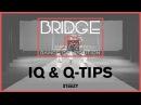 IQ / Q Tips | Bridge Jr's 2017 (Winter) | STEEZY Official 4K