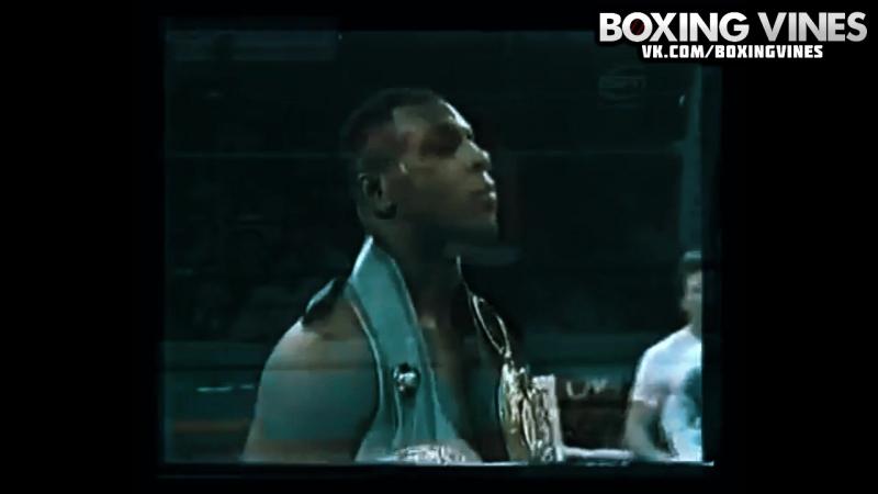 BOXING_VINES ( by Vital ) (Boxing Vines) l vk.com/boxingvines