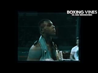 BOXING_VINES ( by Vital ) (Boxing Vines) l