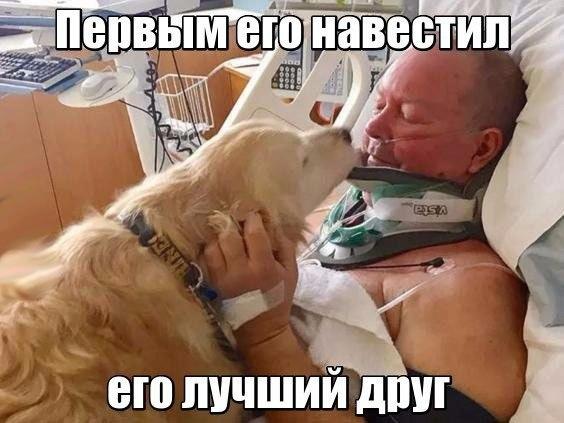 Фото №456247887 со страницы Виталия Мартюшева