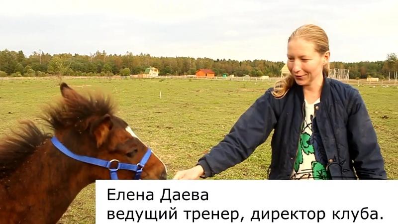 Елена Даева - Первый недоузок