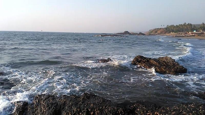 Wave vagator beach