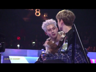 [VK][171201] Jooheon & Vernon fancam @ Mnet Asian Music Awards 2017 in Hong Kong