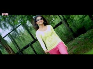 Sare Sare Antunna Full Video Song __ Nee Jathaleka Video Song __ Naga Shourya, S