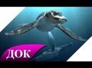 Тайны океанов Морские Динозавры Документальный фильм