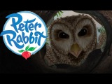 Peter Rabbit - Old Brown's Feather