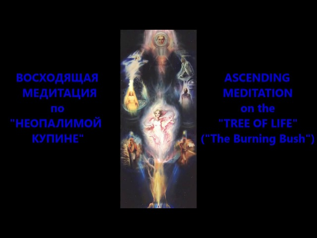 Lyudmila Reznik. Ascending Meditation on the