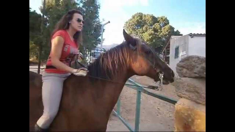 Didi Moon Montando sin silla a caballo