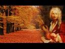 Лечебная музыка Вивальди. Времена года. Осень. Стимулирует память, утоляет боль