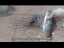 рыбалка на спининг . в поисках полосатого хищника