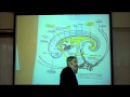 INTRO TO HUMAN EMBRYOLOGY PART 2 by Professor Fink