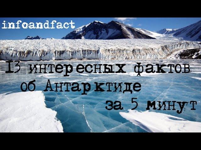 Лучшие видео youtube на сайте main-host.ru 13 интересных фактов об Антарктиде за 5 минут, познавательно и интересно! inf
