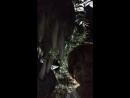 Селфи с динозавром Тбилиси Парк Мтацминда