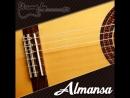 Almansa 449 Cypress Flamenco