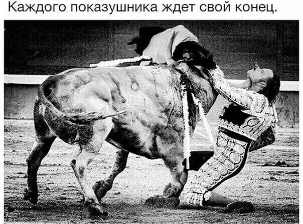 Фото №456243387 со страницы Артура Деркача
