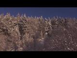 M.Pravda - Taiga (Видеоклип) (promodj.com)