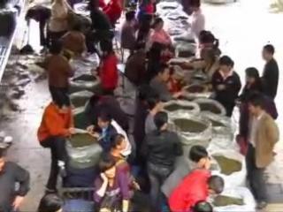 Чайный рынок в городе Анси
