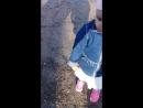 Хотели лебедей покормить а получилось уток))