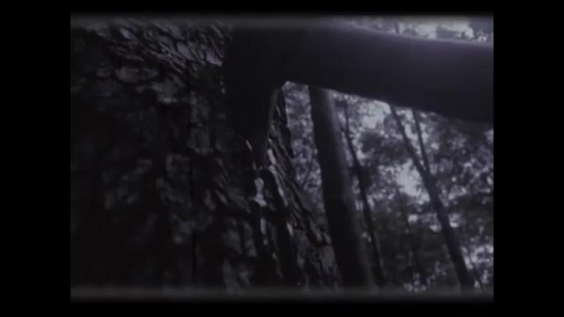 Slipknot - Wait and bleed (Русские субтитры)