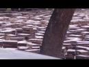 Демонтированные плитки и бордюрные камни в Москве на улице Космонавта Волкова в сквере возле дома № 3 9 июля 2017 года в 13 часо