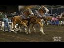 Farm Fair International Horse Pulls