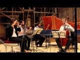 Telemann Paris Quartet No. 6 in E minor (Vite) Nevermind