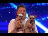 Mahny and Robbie Open a Yoga for Dog Class With The Judges!  Week 1  Britain's Got Talent 2017
